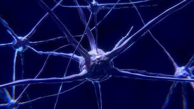 neurone-cos-e-come-funziona